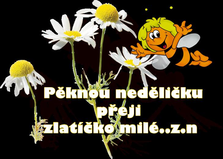 0_19ce62_d943b3b2_orig.png